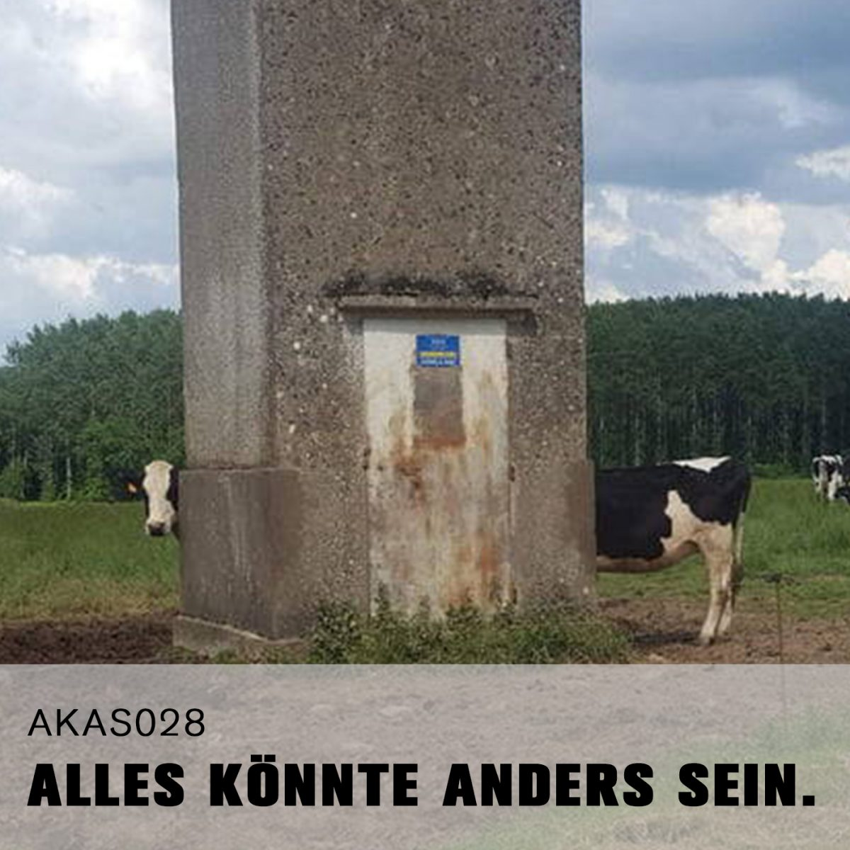 AKAS028 Fliegen auf Bul(l)ettenbrötchen