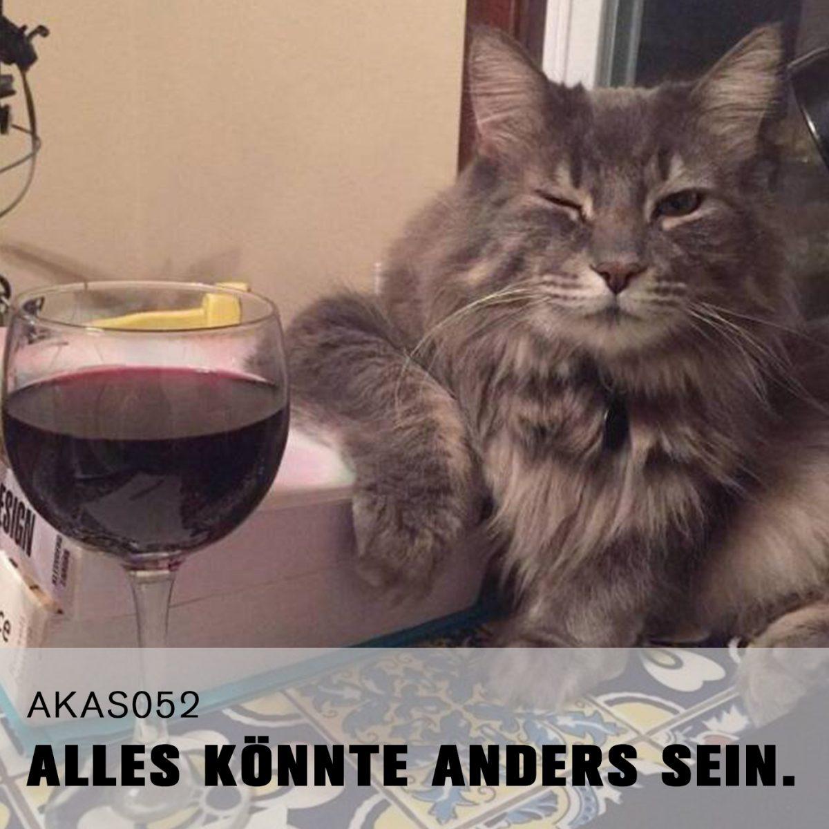 AKAS052 Blues-Erguss